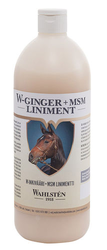 W-Ginger+MSM Liniment